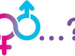 Intersessualità: il terzo sesso